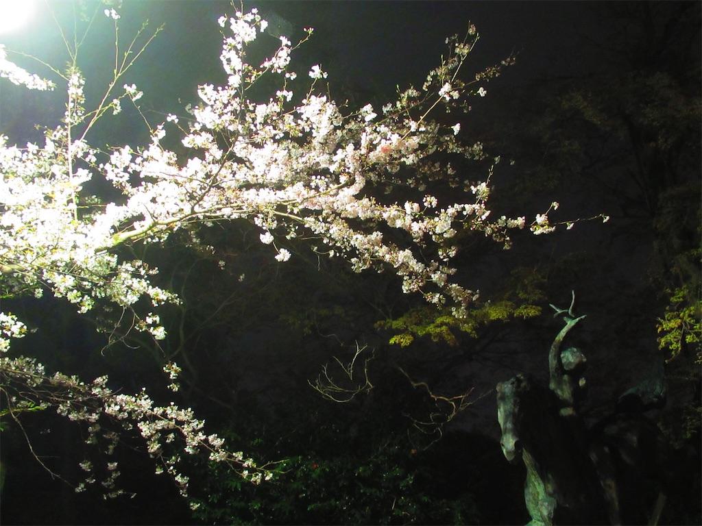 f:id:nekohachi88:20170407213514j:image