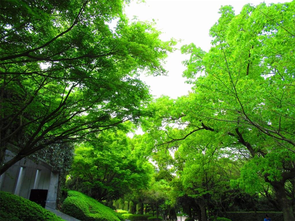 f:id:nekohachi88:20170425210049j:image