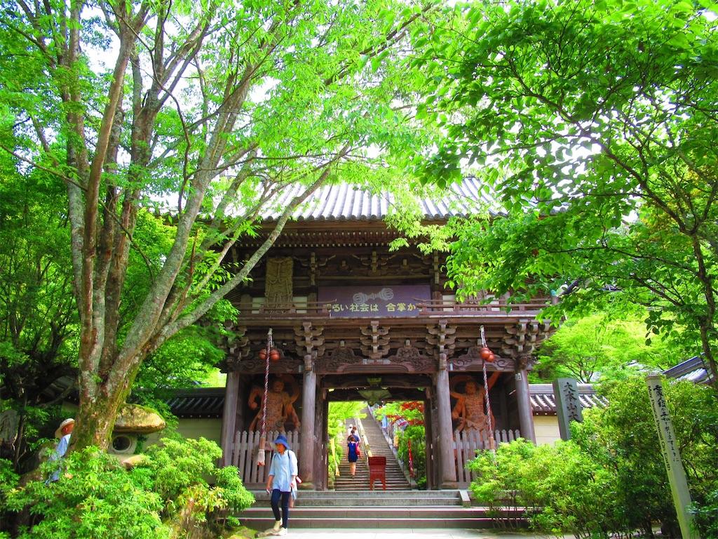f:id:nekohachi88:20170527231634j:image