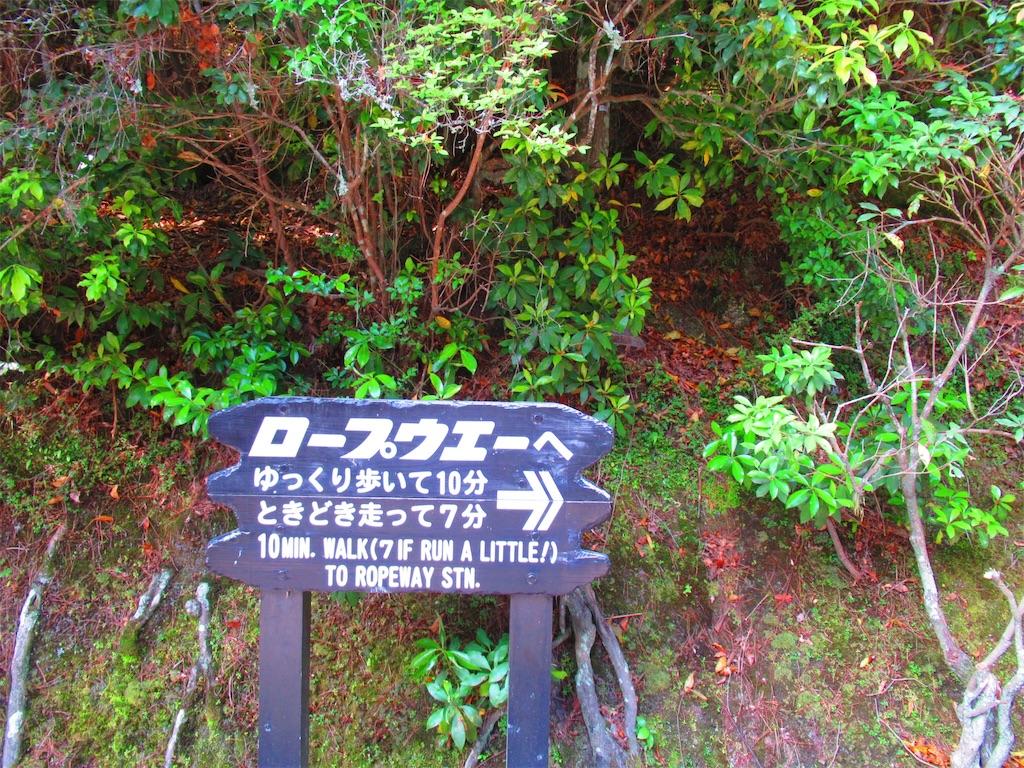 f:id:nekohachi88:20170528000654j:image