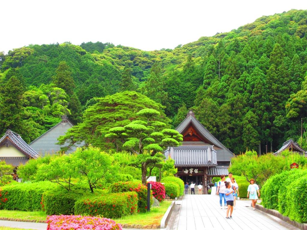 f:id:nekohachi88:20170619234940j:image