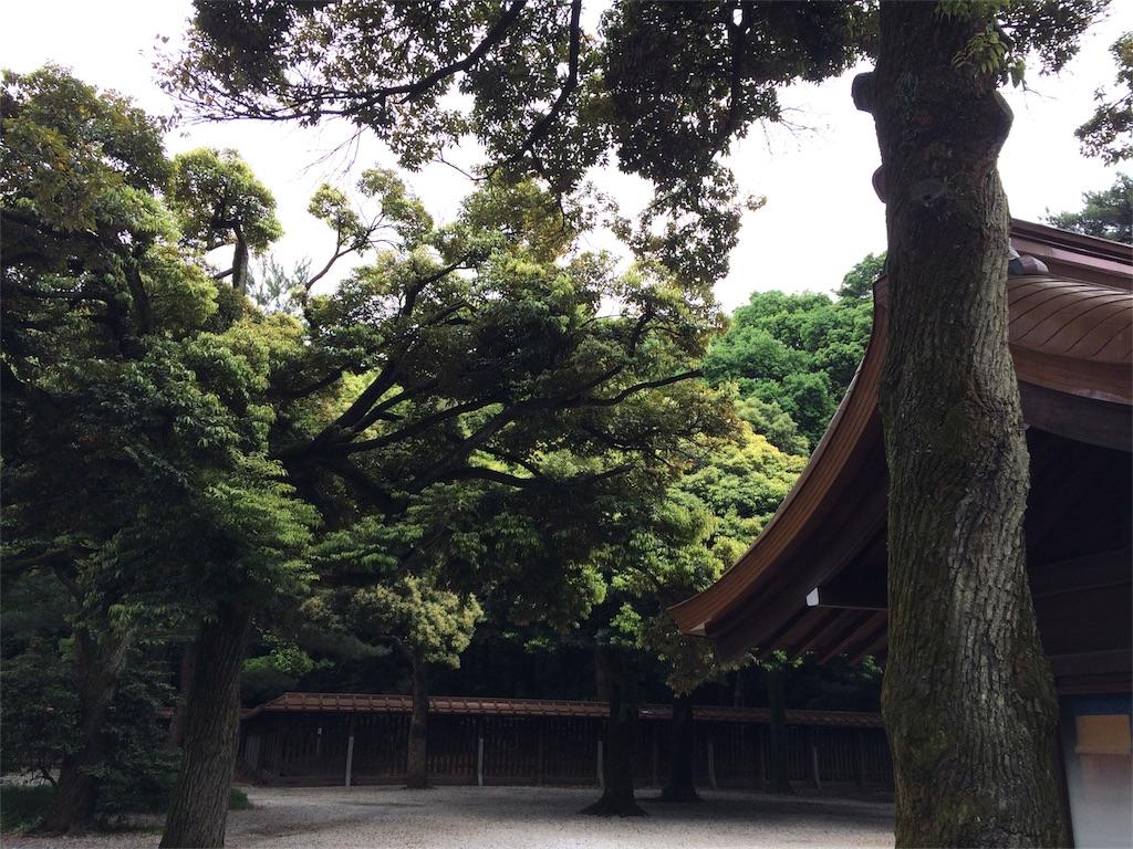 f:id:nekohachi88:20170817115429j:image