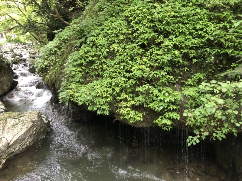 玉垂れの滝
