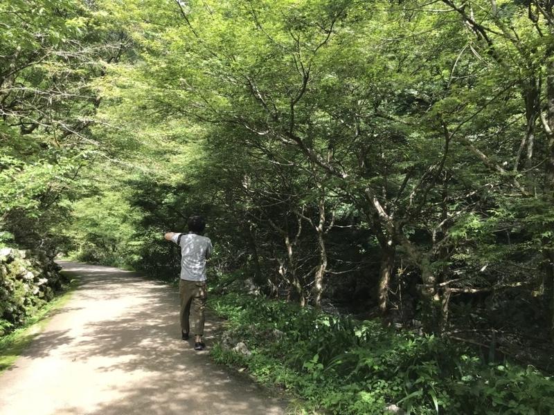 神庭の滝への道