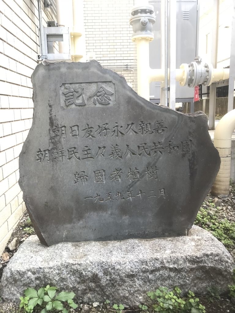 f:id:nekohoshi:20181119205651j:plain