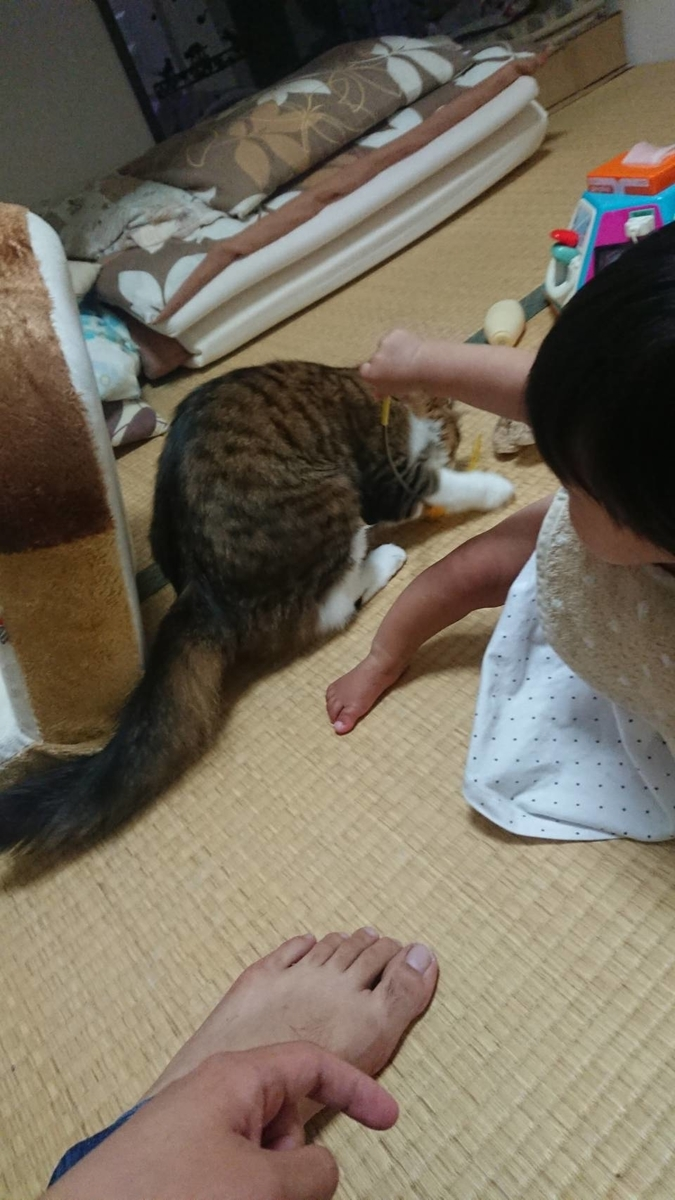f:id:nekoja-peterpan:20190626171904j:plain