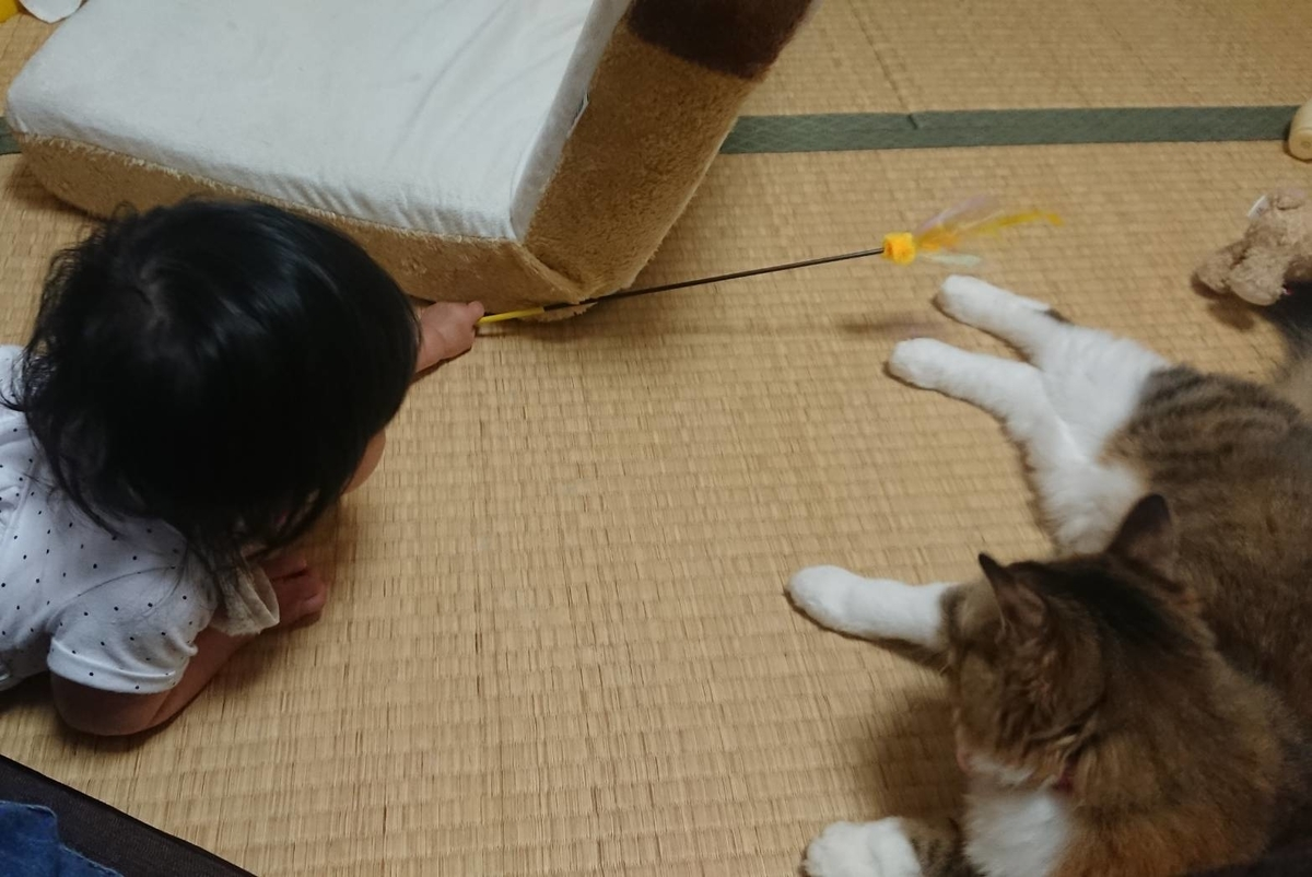 f:id:nekoja-peterpan:20190626171953j:plain
