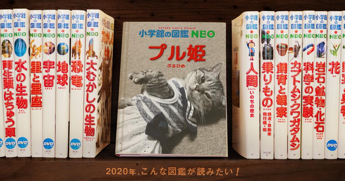 f:id:nekokan1220:20200118134550p:plain