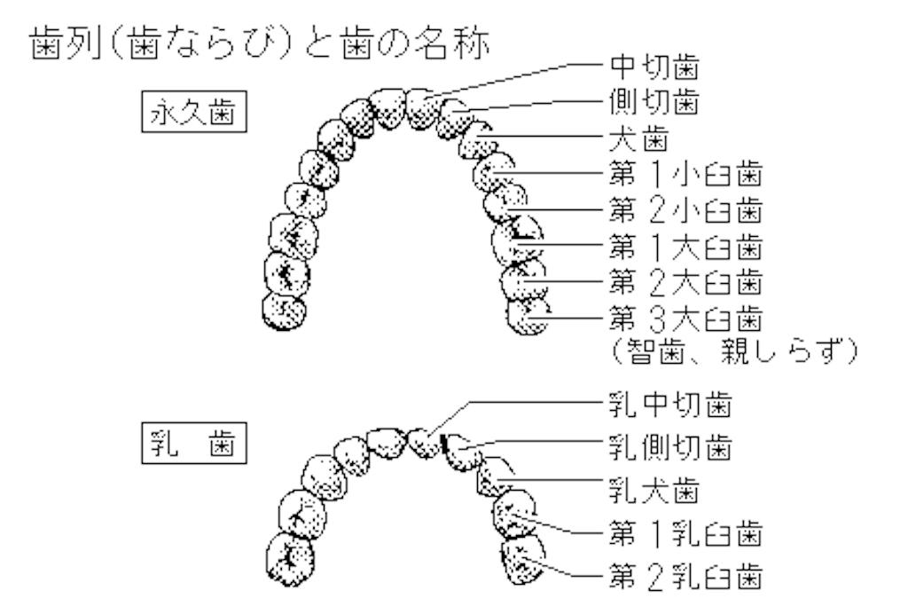 f:id:nekokichi8:20170218211149p:image