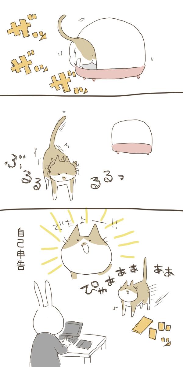 f:id:nekokomachi:20200104151517j:plain