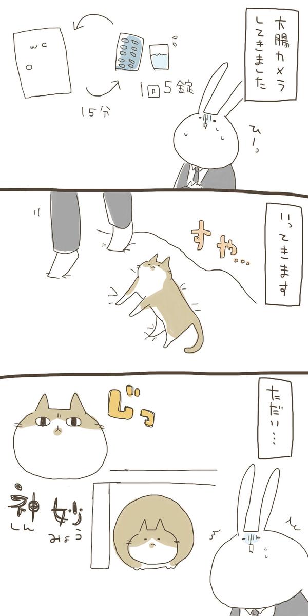 f:id:nekokomachi:20200112151023j:plain