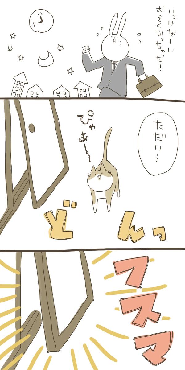 f:id:nekokomachi:20200112153452j:plain