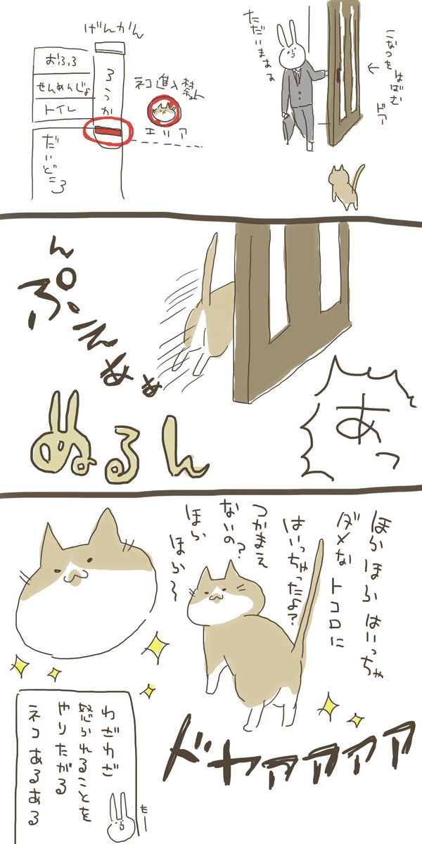 f:id:nekokomachi:20200119094836j:plain