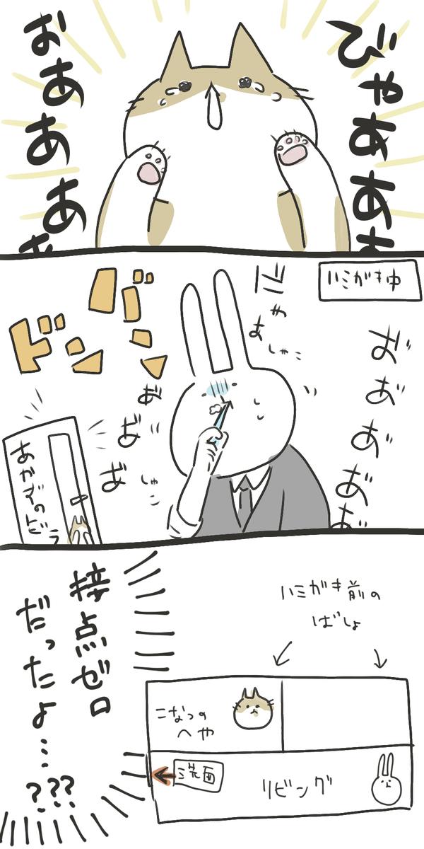 f:id:nekokomachi:20200531105806j:plain