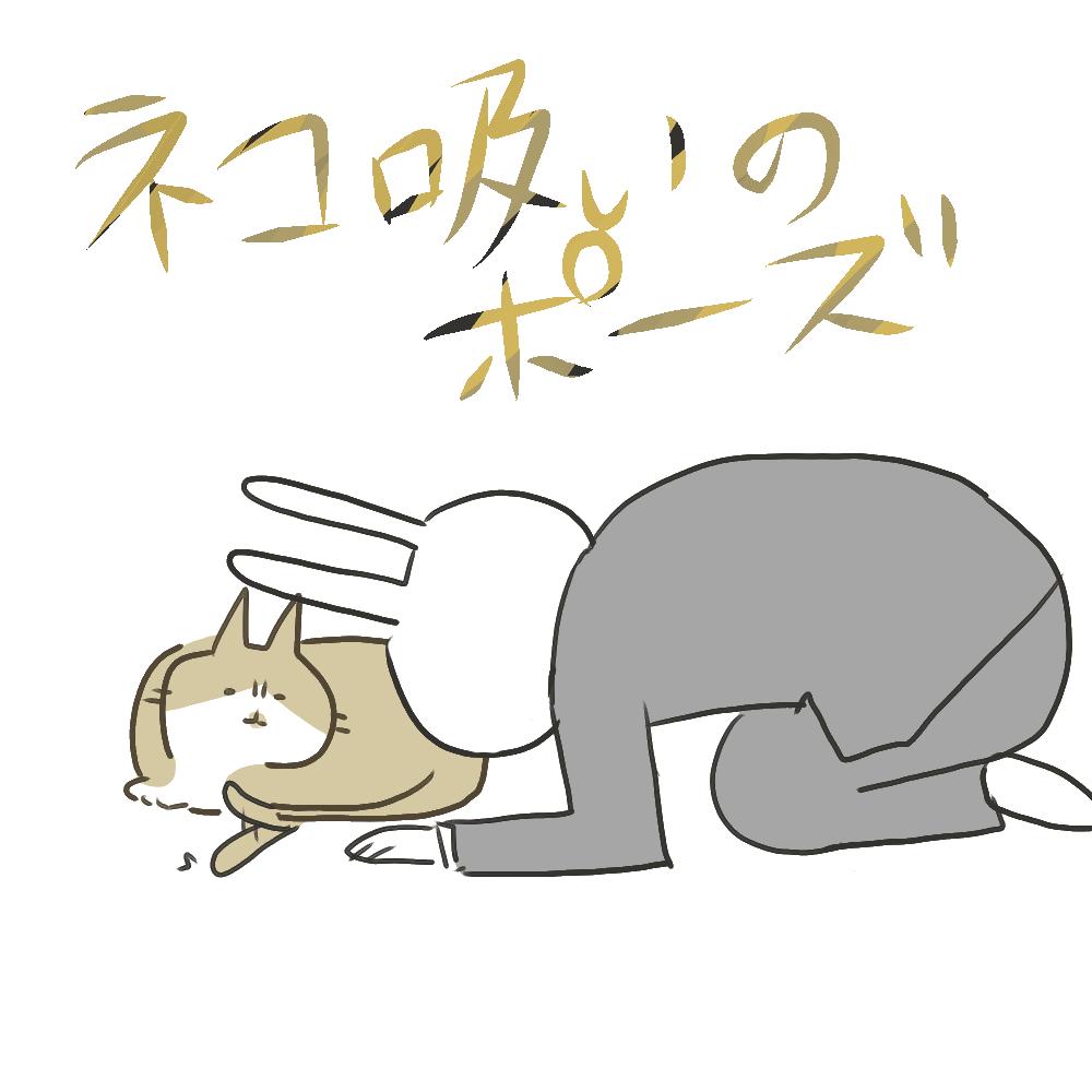 f:id:nekokomachi:20200531111834j:plain