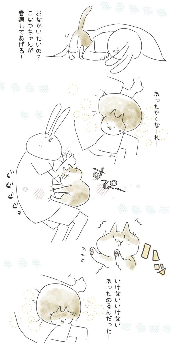 f:id:nekokomachi:20200914152944j:plain