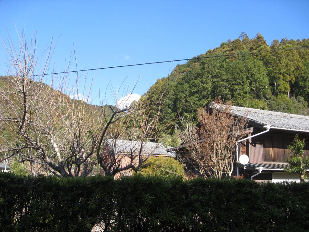f:id:nekokuro2510:20170213103649j:plain