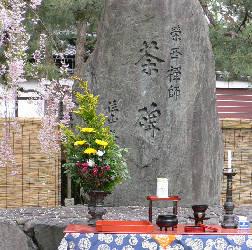 建仁寺 茶碑の枝垂桜