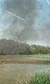 田植の終わった水田に流れるSLの黒煙