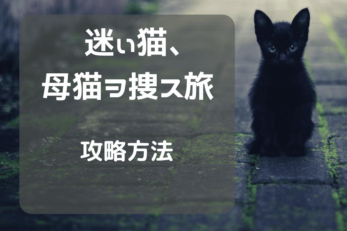 f:id:nekoneko-wakakun:20210520193856p:plain