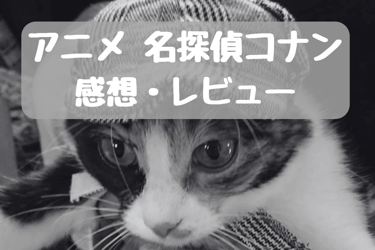 f:id:nekoneko-wakakun:20210616220951p:plain
