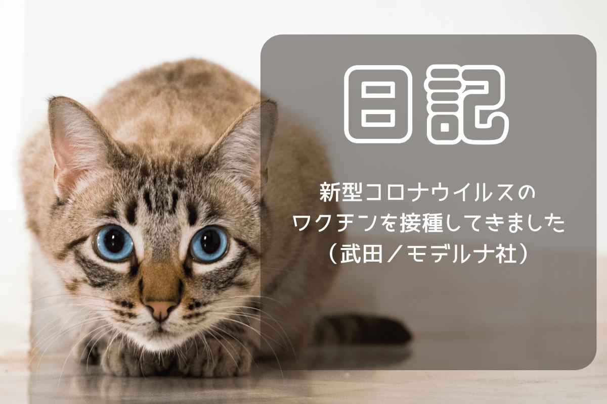 f:id:nekoneko-wakakun:20210516163938p:plain
