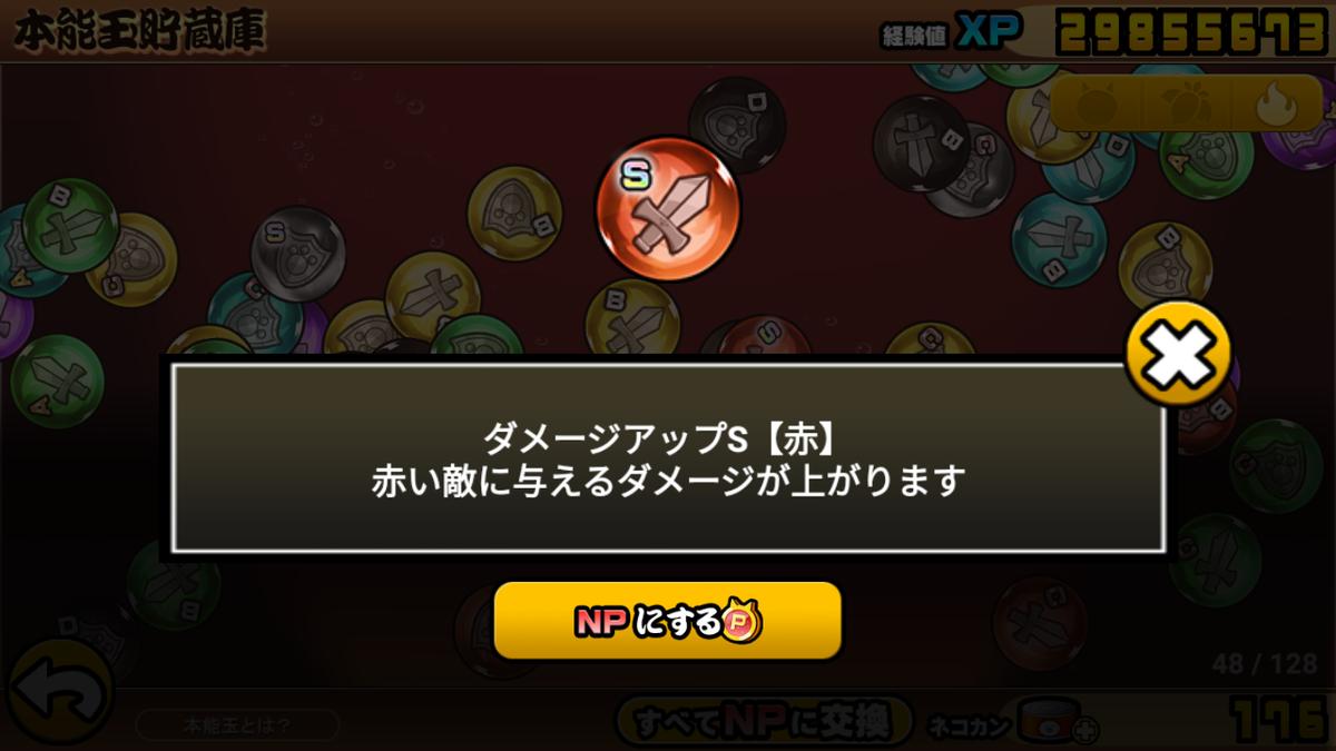 にゃんこ 48