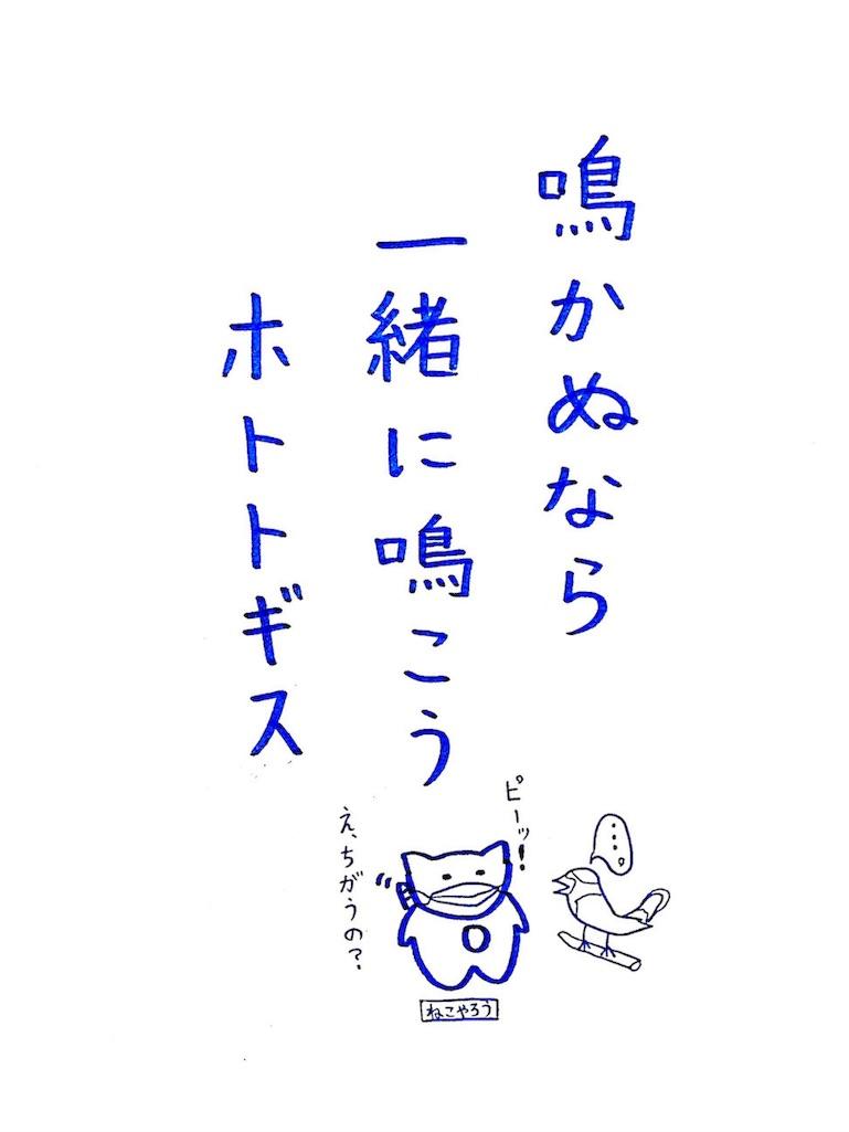f:id:nekonekoyarou:20161201005958j:image