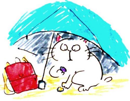 貝殻観察 日傘必須