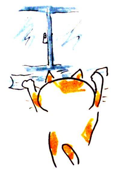 台風対策真面目に取り組むねこ 窓のさん埋め
