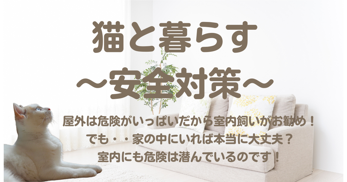 f:id:nekonohanachan2021:20211012103358p:plain