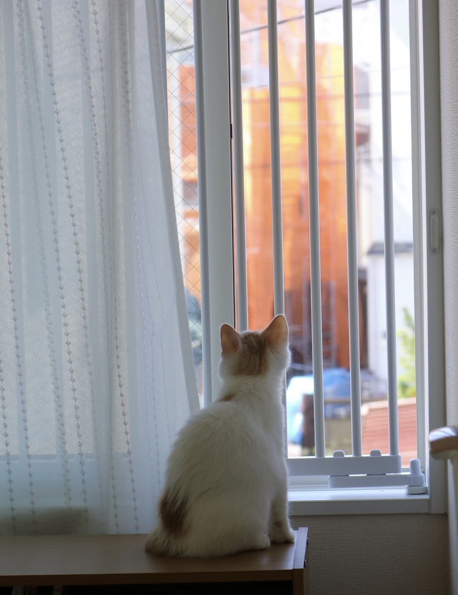 窓用脱走防止策