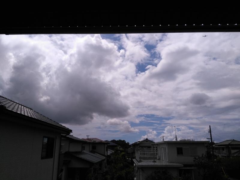お天気実況中継