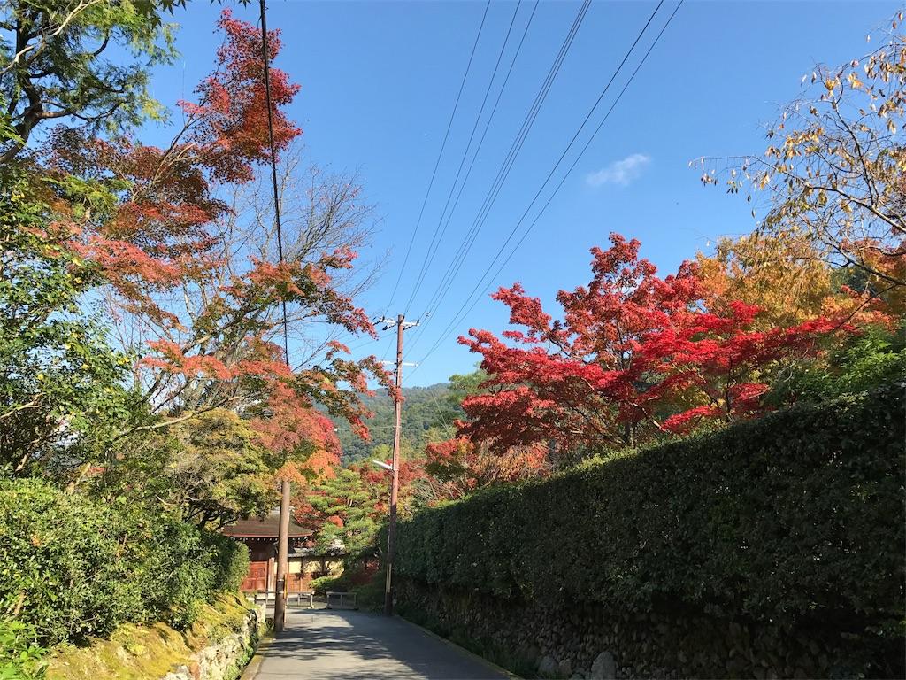 南禅寺に向かう道
