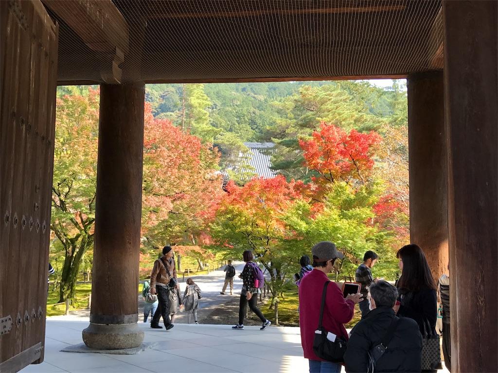 南禅寺三門「天下龍門」から見る紅葉