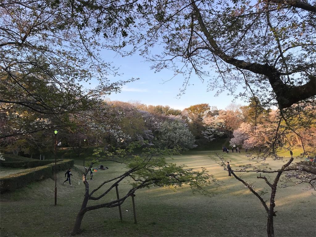 夕方の城址公園