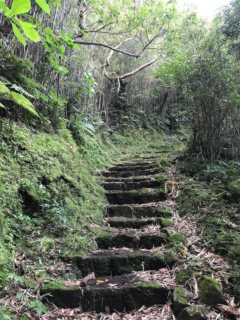 苔に覆われた古い石段