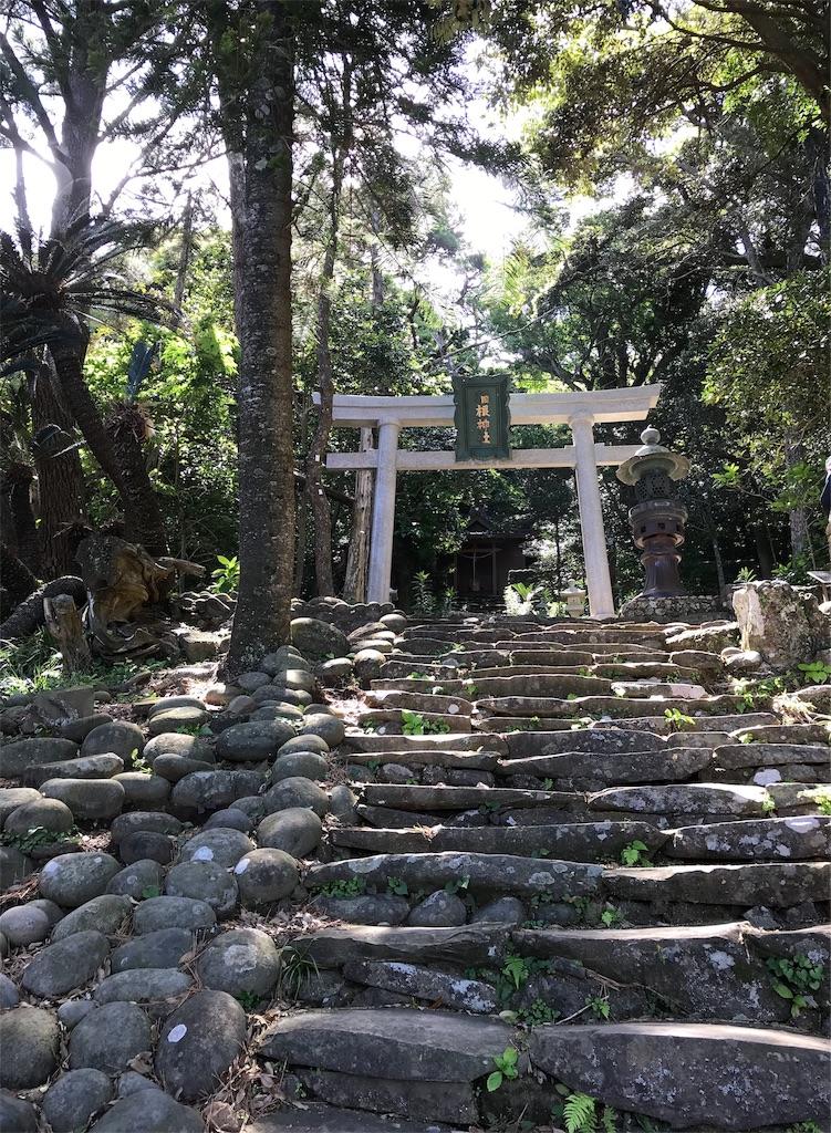 稲根神社の白い鳥居