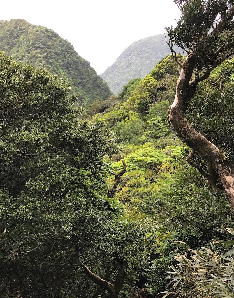 深い谷と山々