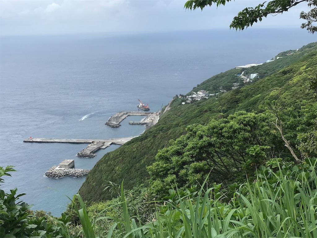 御蔵島集落全景
