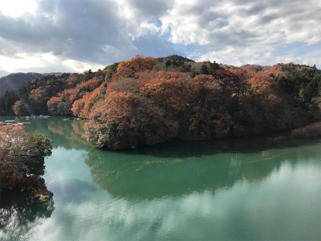 光る緑の湖面に映る島のように見える紅葉