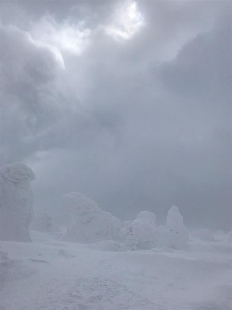 荒ぶる雪雲と吹き荒れる風とスノーモンスター
