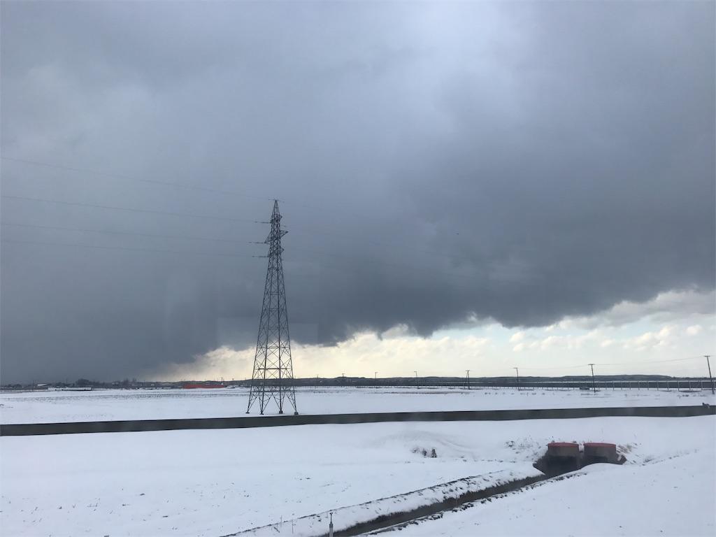 鉄塔の立つ雪の田圃と地平線と空。