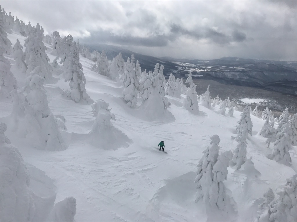 スノーボーダーが雪に覆われた樹林の中を滑って行きます。