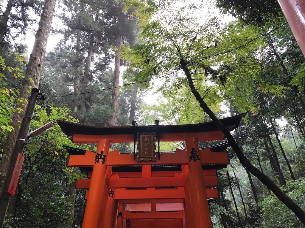 千本鳥居と木々