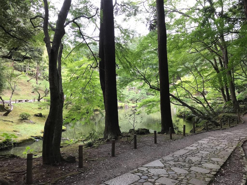 美しい池と木立