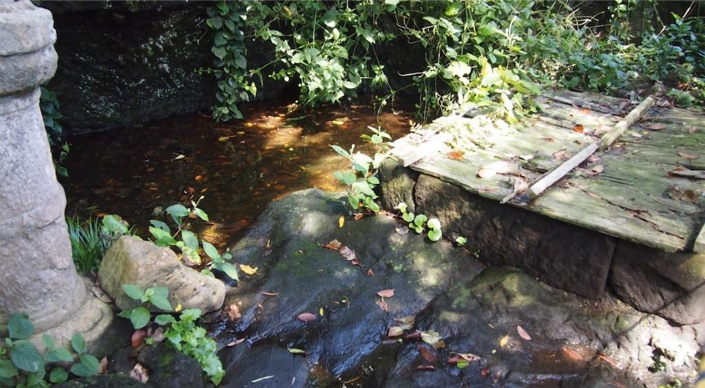 屋敷の庭の池