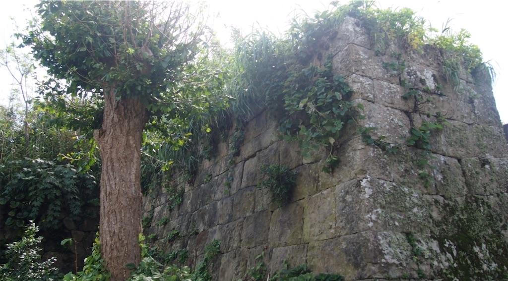 江戸城かと思うような堅牢な石垣