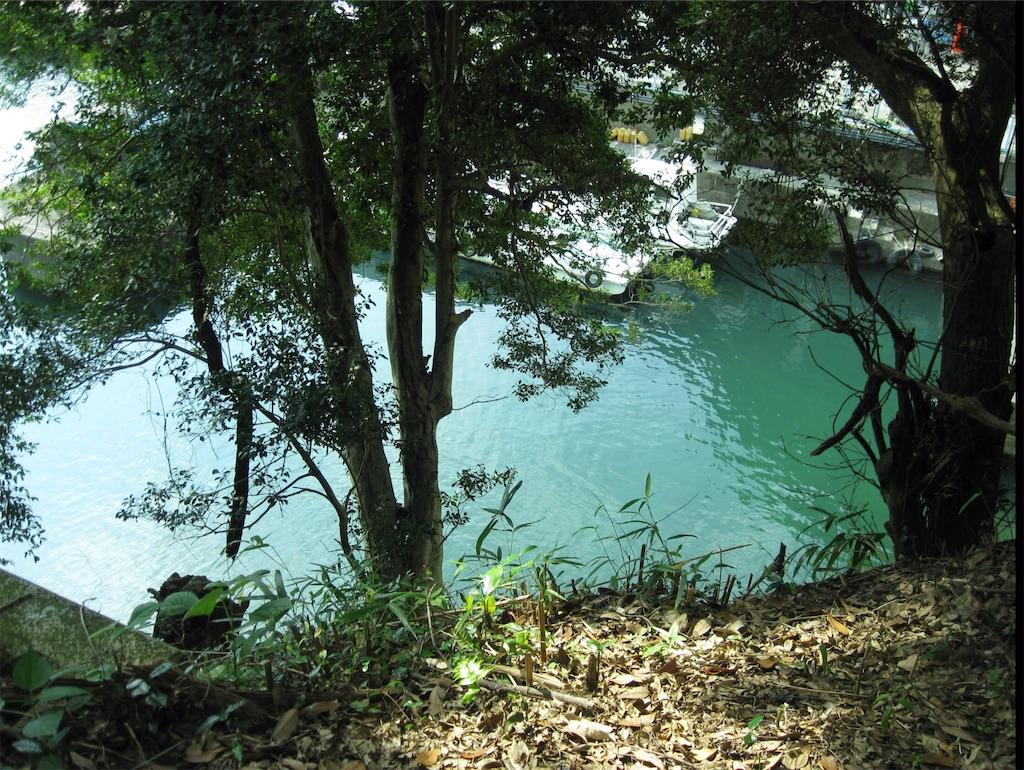 島から見る琵琶湖の水