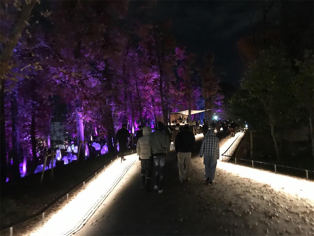 東所沢公園の「どんぐりの森の呼応する生命」